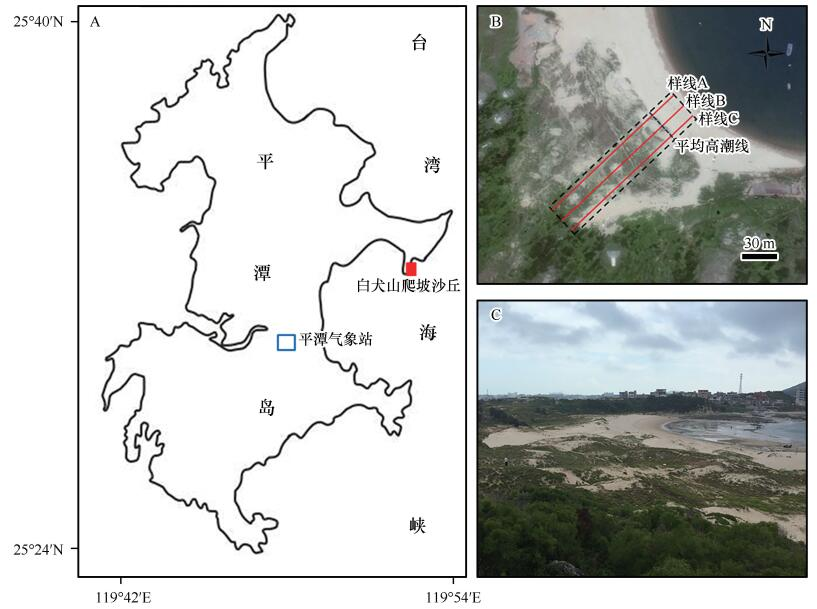 Morphological change of coastal climbing dunes in Pingtan Island of China after typhoon group